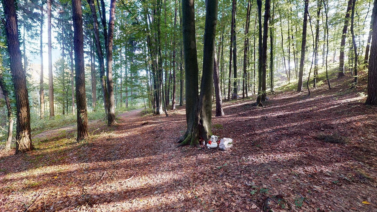 Franziskus-Urnenhain-im-Schilcherland_Tierkreamtorium_Lebring_Graz_03